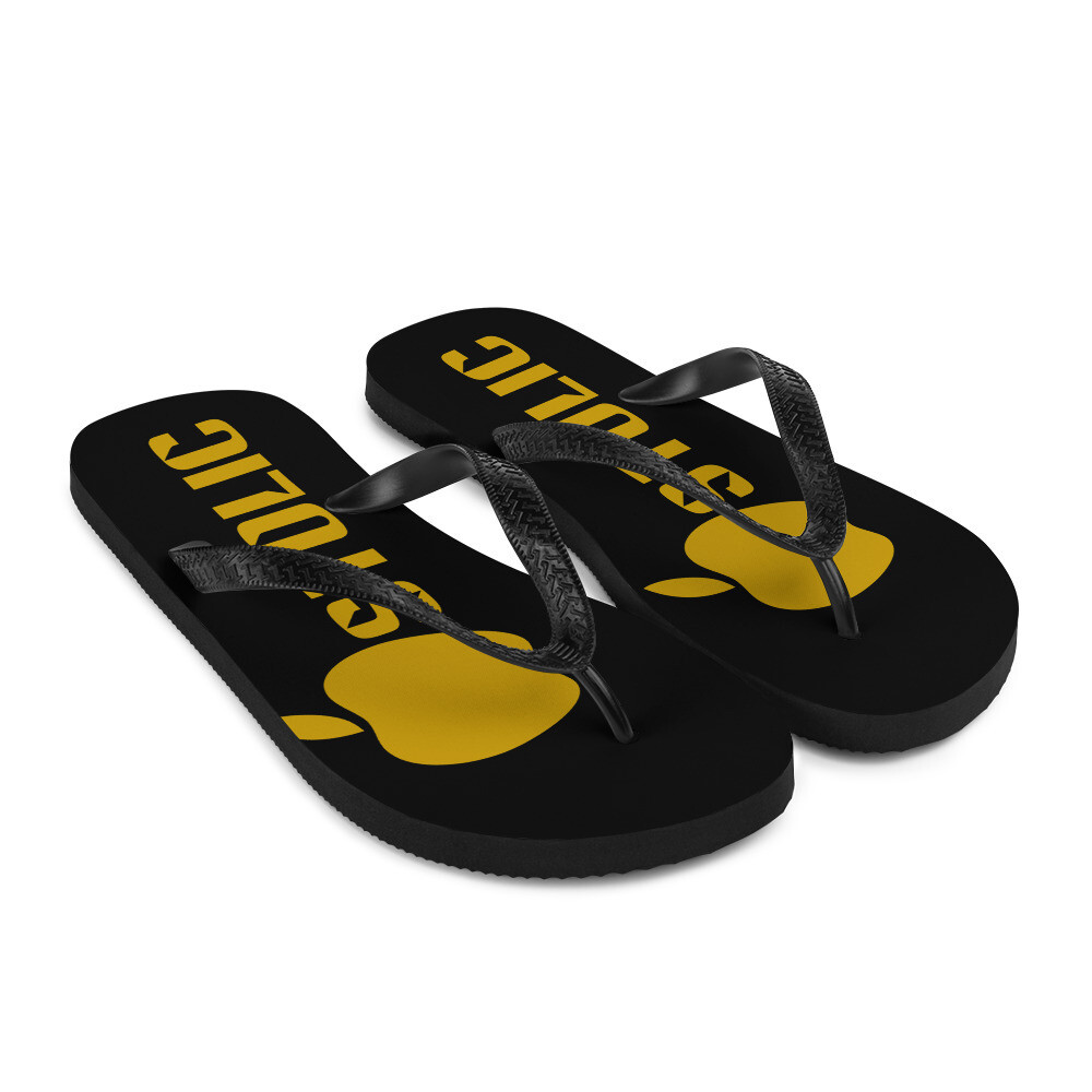 Apostolic Flip-Flops BG