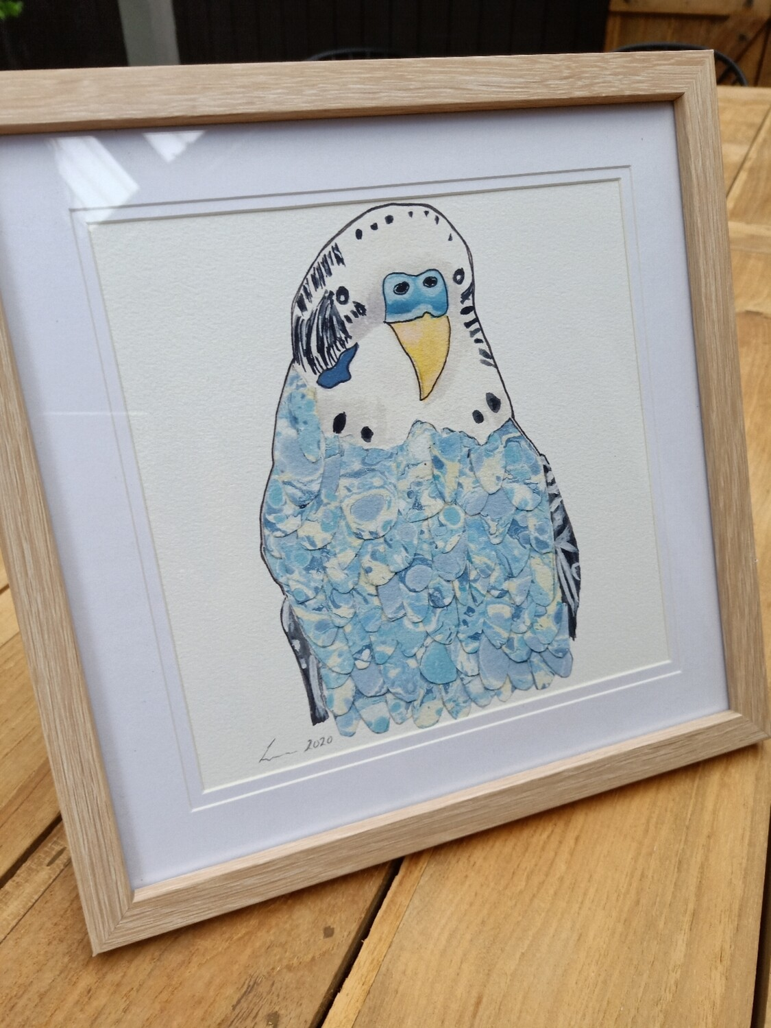 Blue Budgie Print - Watercolour and Mixed Media - Framed