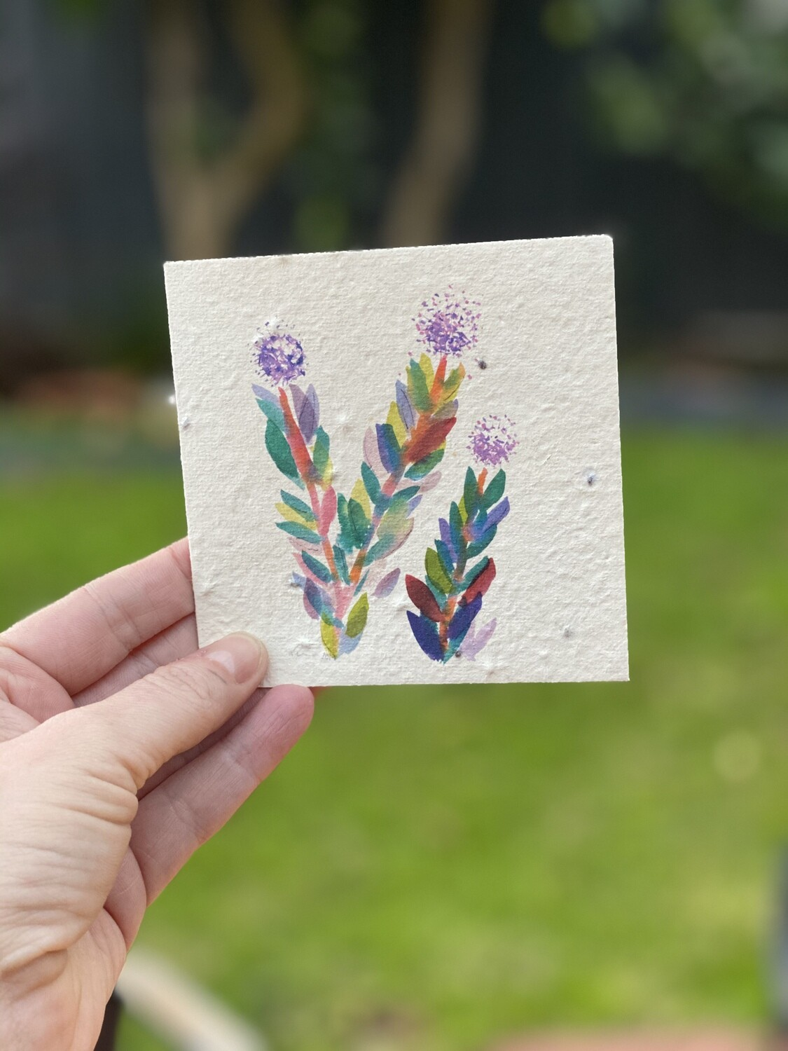 Melaleuca Print Small Seeded Card - Free Shipping