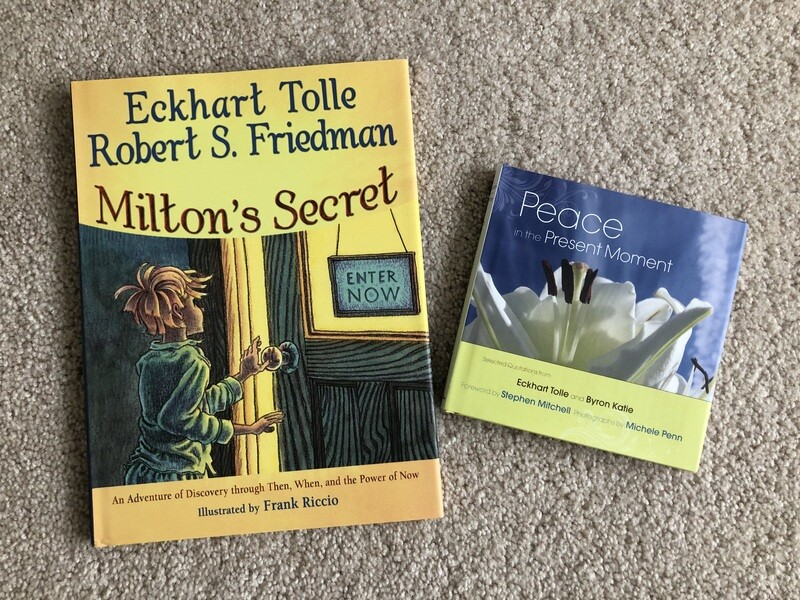 Eckhart Tolle Books - 2 for $25 - FREE USA Shipping