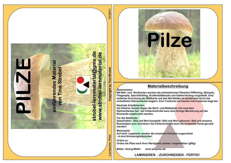Pilze Lernkartei - einführend