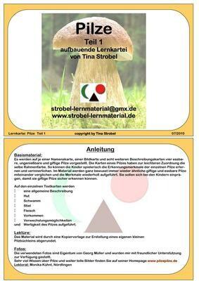 Pilze Lernkartei - aufbauend 1