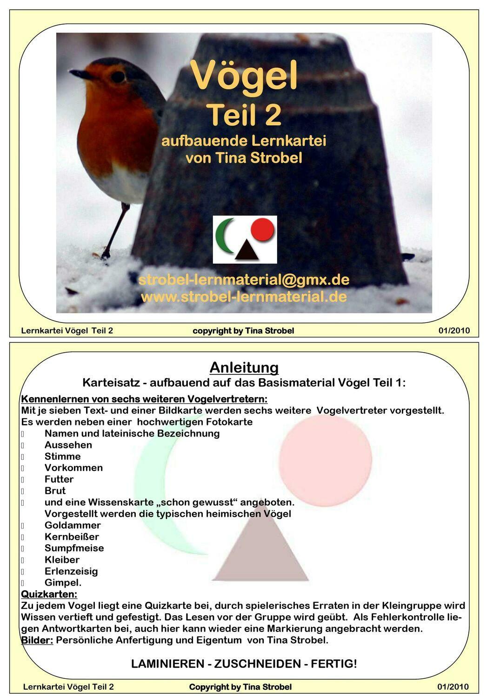 Vögel Lernkartei - aufbauend 2