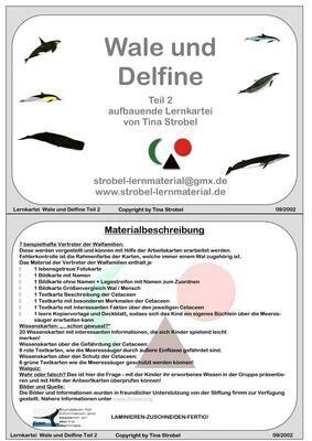 Wale und Define - aufbauend 2