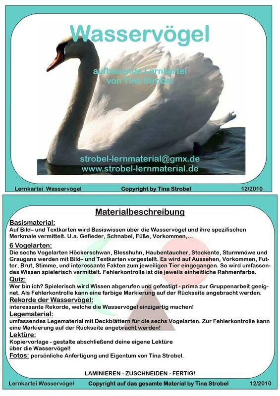 Wasservögel Lernkartei - aufbauend
