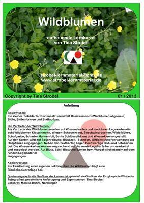 Wildblumen Lernkartei - aufbauend