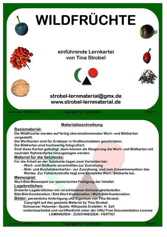 Wildfrüchte Lernkartei - einführend