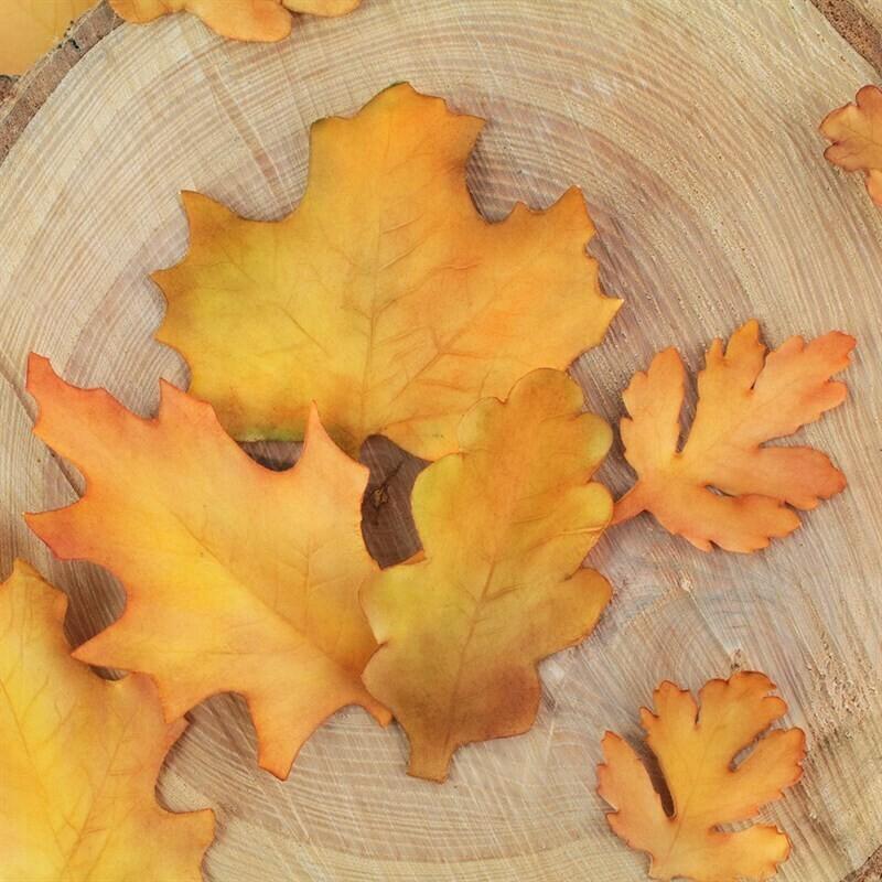 FMM Flower Cutters -SEASONAL LEAVES - Σετ 4τεμ κουπ πατ Εποχιακά Φύλλα