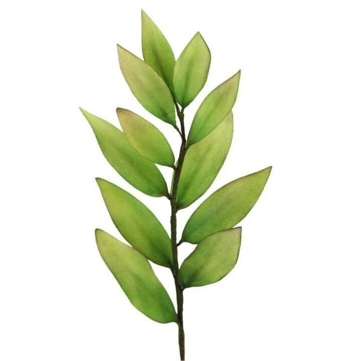FMM Flower Cutters -MULTI-PURPOSE PETAL & LEAF - Σετ 5τεμ κουπ πατ Πέταλα & Φύλλα
