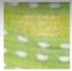 Ribbons - 3mm Cord Pale Green 45.5m - Κορδελάκι Λαχανί