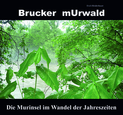 Murwald -Die Murinsel im Wandel der Jahreszeiten