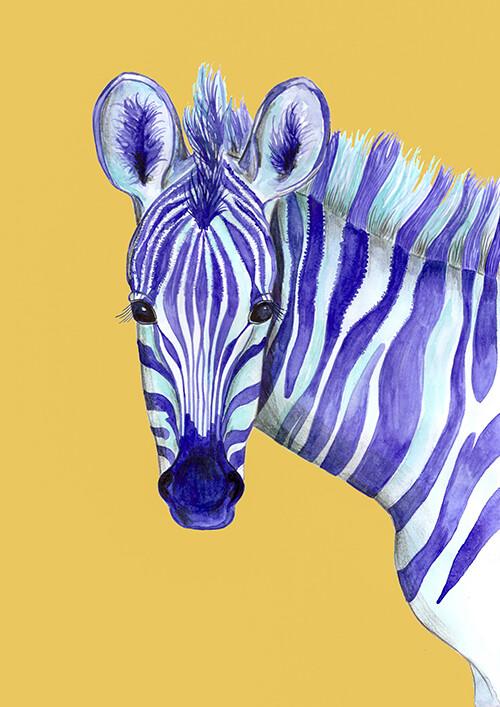 Zebra illustration print