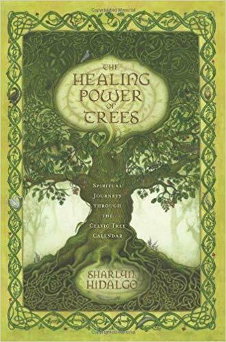Healing Power of Trees by Sharlyn Hidalgo