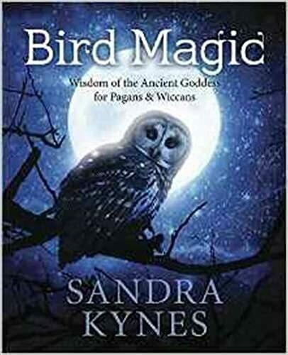 Bird Magic by Sandra Kynes