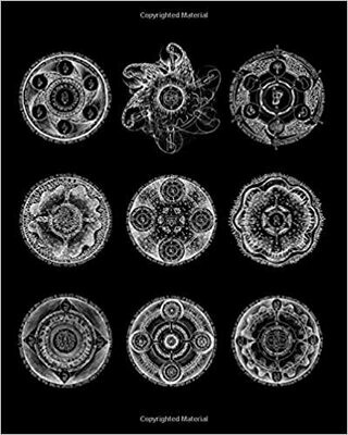Deep Principles of Kabbalistic Alchemy by David Chaim Smith