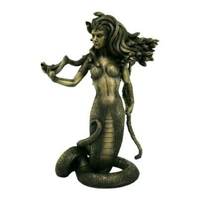 Medusa 12156
