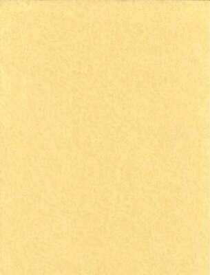 Parchment Light 5pk 8.5x11