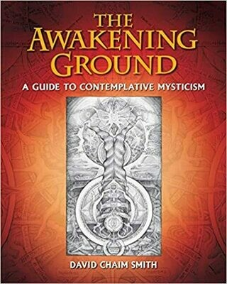 The Awakening Ground by David Chaim Smith