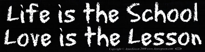 Life is the School sticker