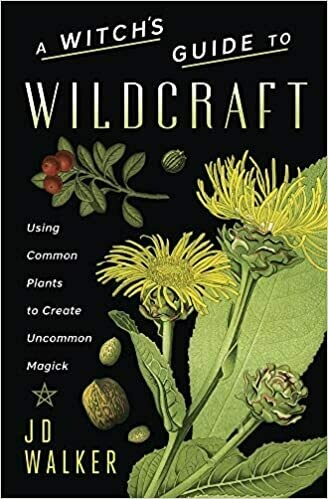 A Witch's Guide to Wildcraft by JD Walker