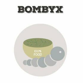 Neue Seidenspinnerraupen sowie Futter für Bombyx