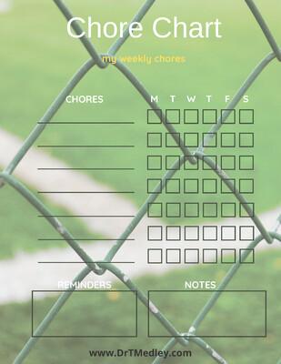 Child Chore Chart- sports