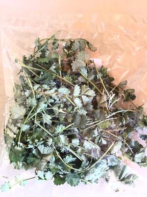 Salad Burnett (Organic)