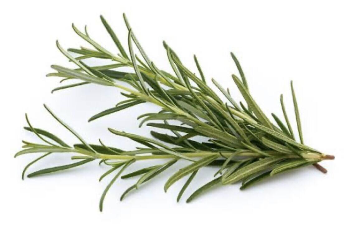 Rosemary (Organic)