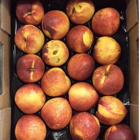 Nectarines (700g) Certified Organic