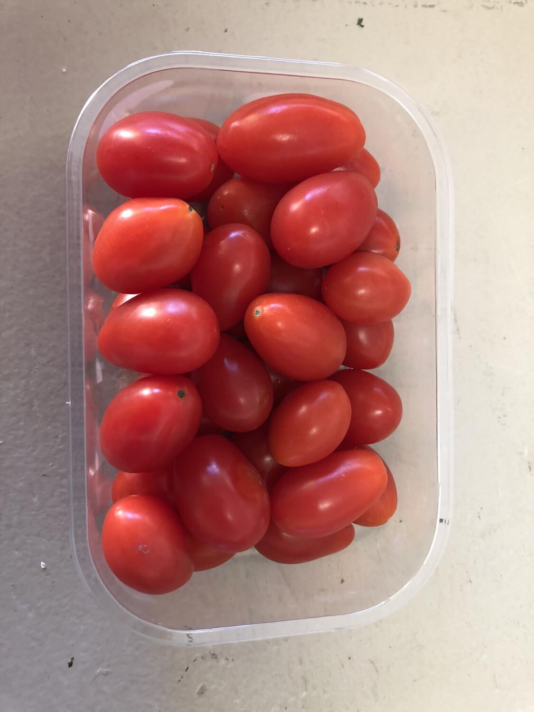 Spanish Cherry Tomatoes
