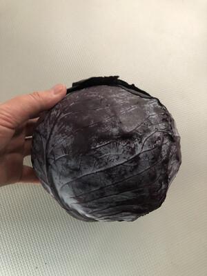 Red Cabbage (Organic)