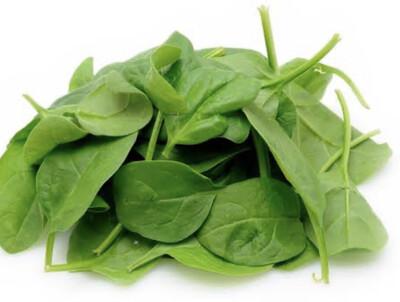 Baby Leaf Spinach