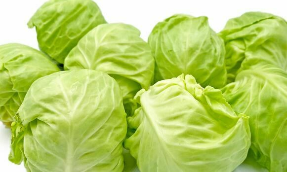 Green Medium Cabbage (2)