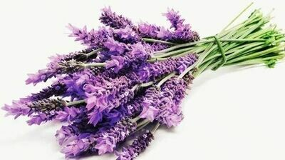 Lavender bunch (Organic)