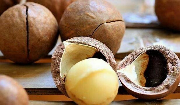 Macadamia Nuts (Still in shells) 500g (Organic)