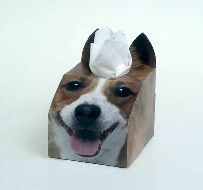 Jack Russell Tissue Box Set