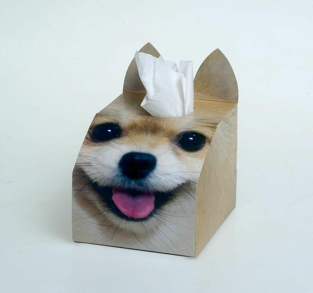 Toy Pom Tissue Box Set