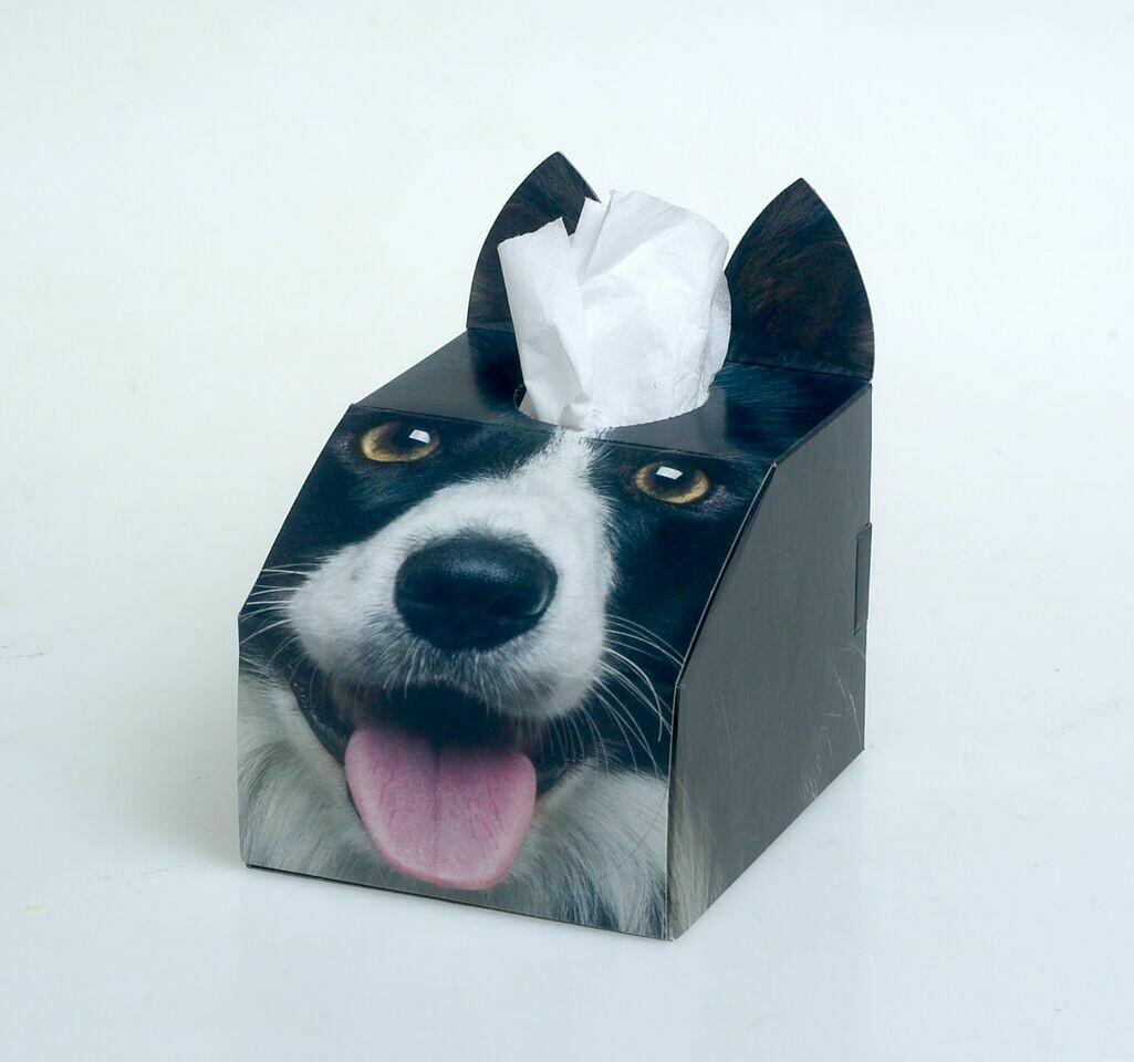 Border Collie Tissue Box Set
