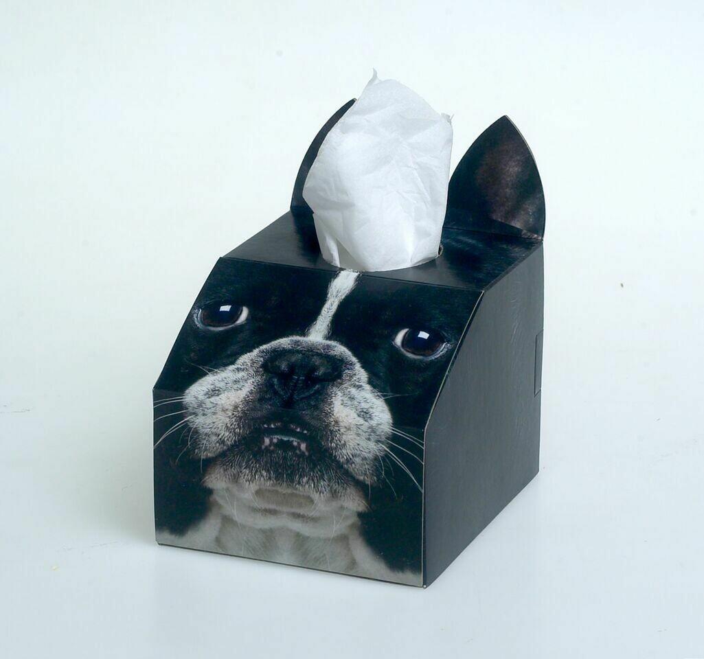 Boston Terrier Tissue Box Set
