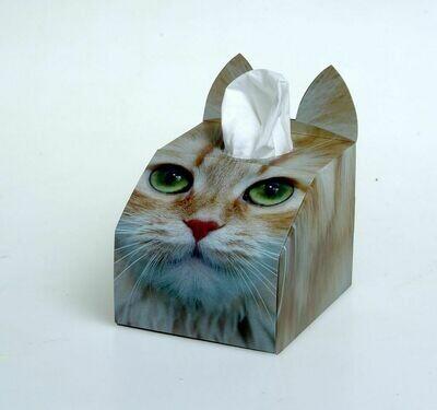 Ginger Cat Tissue Box Set