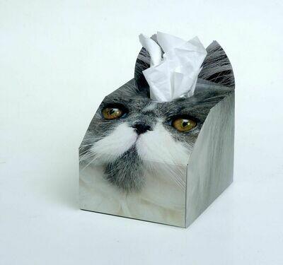 Persian Cat Tissue Box Set