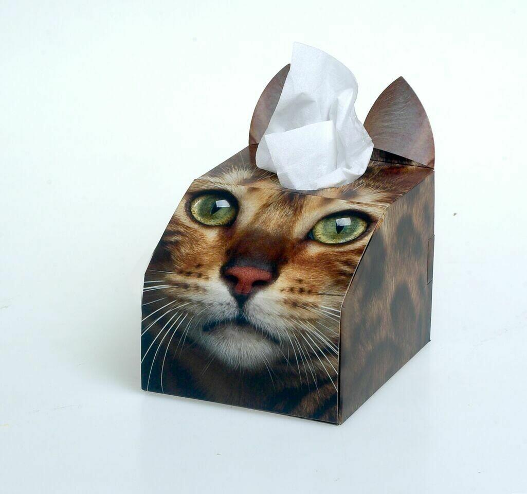 Bengal Cat Tissue Box Set