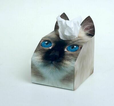 Birman Cat Tissue Box Set