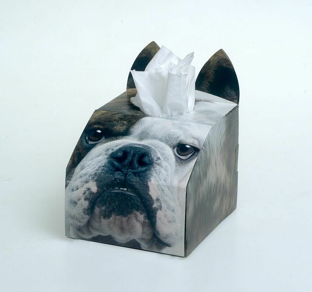 Bulldog Tissue Box Set