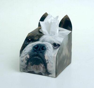Bulldog Tissue Box Set