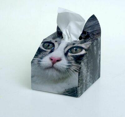 Siberian Cat Tissue Box Set