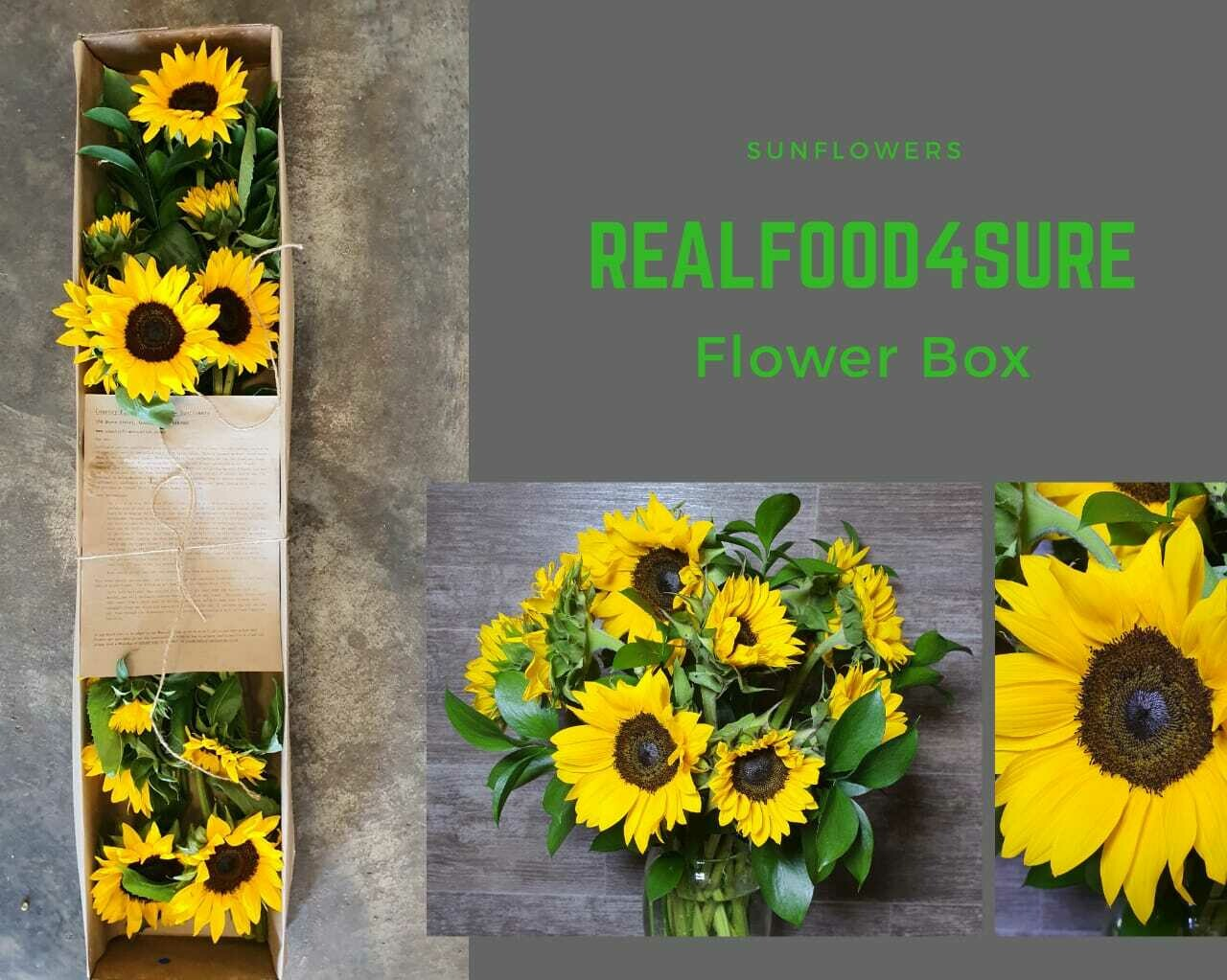 Flowers in a Box (Sunflowers)