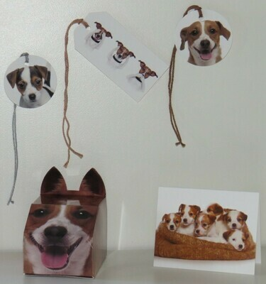 Jack Russell Gift Pack