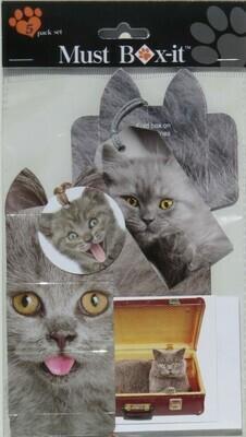 Grey Kitten Gift Pack