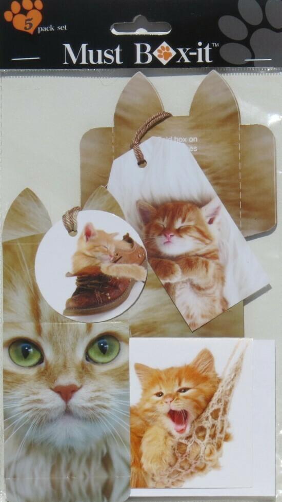 Ginger Gift Pack